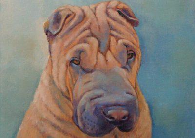 Een portret van een Shar-Pei